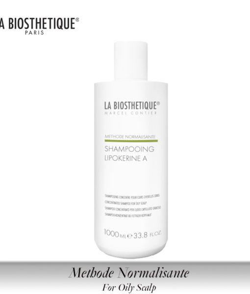 Hair_Methode_Normalisante_130317_Shampooing_LipokerineA_rend_roe_06.2013